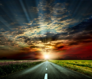 bigstock-along-the-road-31765295